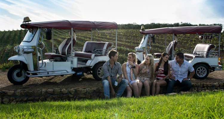 Do a Tuk-Tuk Wine Tour in Stellenbosch