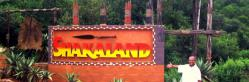 Full Day Shakaland Tour - Durban (SD7)