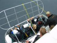 Shark Cage Diving Cape Town (Xtr)